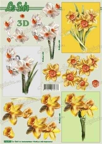 3D Papíry na vystřihování, Narcisy